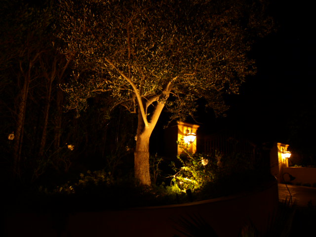 Lighting Camarillo Landscape Lights