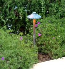 Lighting  Camarillo Landscape Lighting Mushroom Light